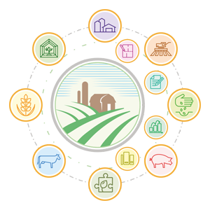 BAS АГРО. ERP - информационные технологии в сельском хозяйстве / бизнес планирование в сельском хозяйстве, компьютерная программа для сельского хозяйства / новітні технології в сільському господарстві, облік сільськогосподарської продукції